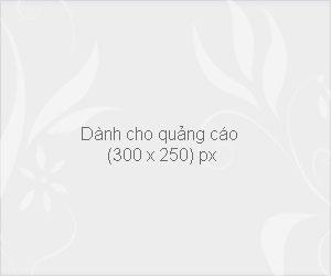 banner-blank-300x250
