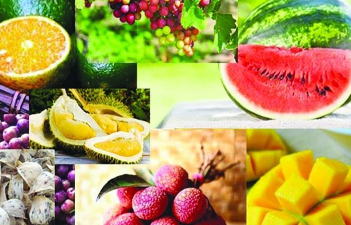 Đặc sản Việt sẵn sàng tiến vào thị trường hàng đầu thế giới