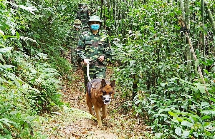 Cán bộ, chiến sĩ BĐBP Hà Tĩnh tuần tra, chốt chặn biên giới. Ảnh: Thế Mạnh