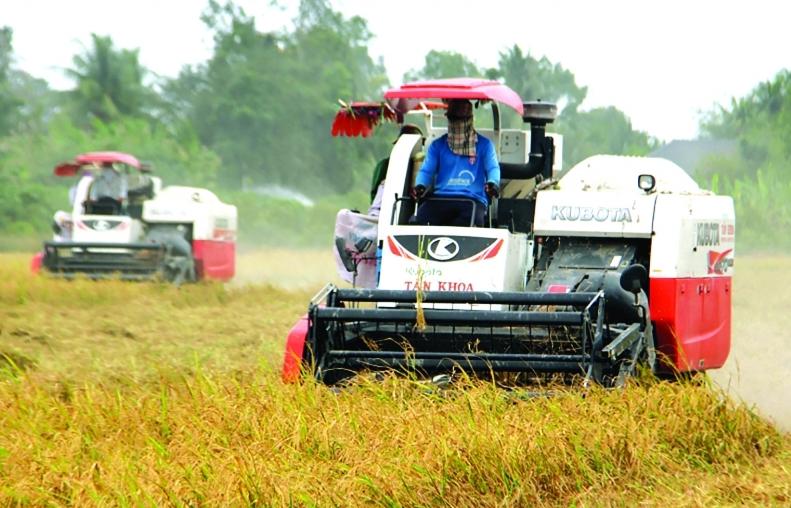 Việt Nam mong muốn Indonesia tạo điều kiện xuất khẩu gạo, nhập khẩu than