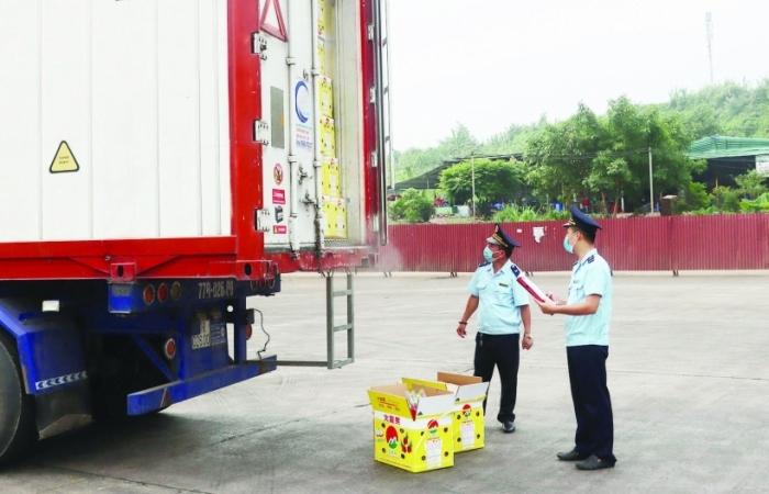Giải pháp thông quan nông sản nhanh trong ngày hỗ trợ xuất khẩu hiệu quả