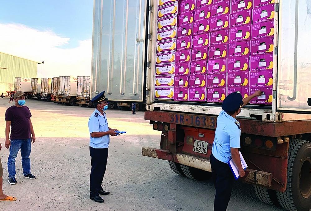 Công chức Chi cục Hải quan cửa khẩu quốc tế Lệ Thanh kiểm tra nông sản nhập khẩu từ Campuchia. Ảnh: N.H