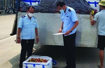 Công nhận địa điểm tập kết hàng hóa tại khu thương mại-công nghiệp Kim Thành