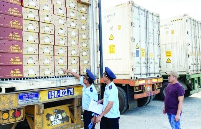 Hải quan các tỉnh Tây Nguyên: Tăng cường hỗ trợ doanh nghiệp để ổn định nguồn thu