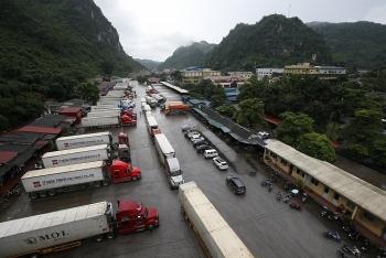 Lạng Sơn:  Hàng nhập khẩu ùn ứ vì Trung Quốc đột ngột áp dụng mẫu C/O mới