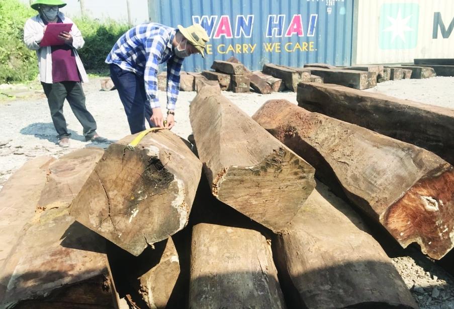 Lật tẩy đường dây nhập lậu hàng chục container gỗ Giáng hương