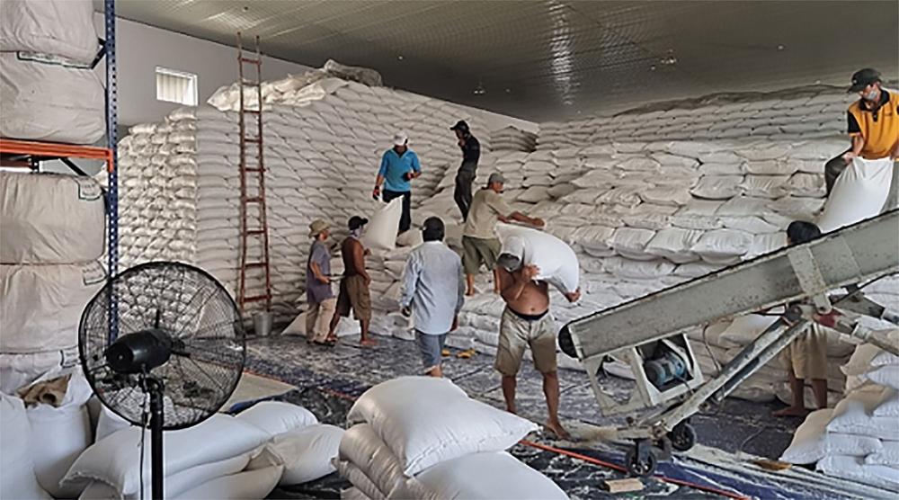 Gạo dự trữ quốc gia nhanh chóng được vận chuyển tới tay người dân.  Ảnh: TCDTNN