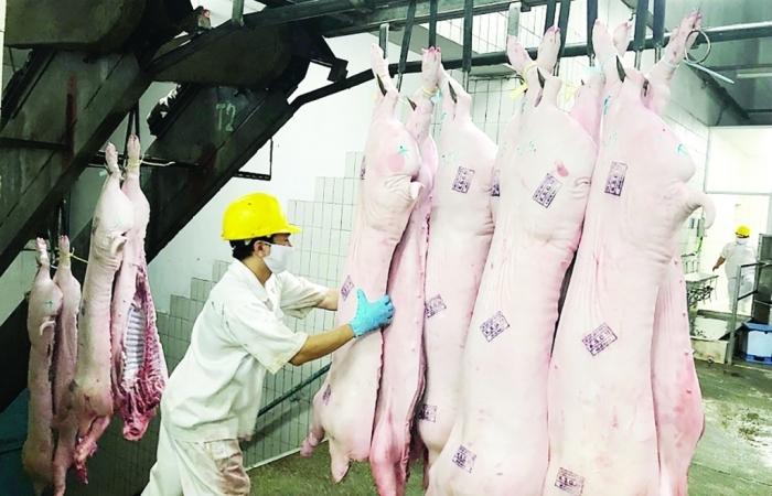 Covid-19 xâm nhập lò mổ làm tăng áp lực cung ứng thực phẩm cho TPHCM và nhiều tỉnh phía Nam