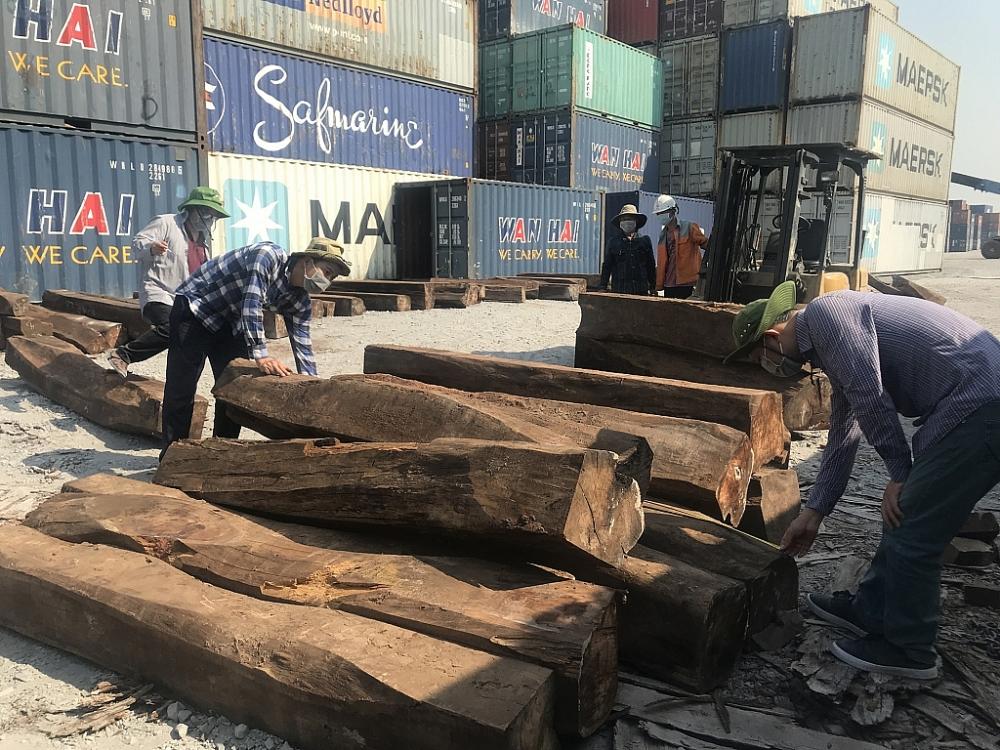 Lô hàng 50 container gỗ đang được kiểm đếm tại cảng. Ảnh: T.H