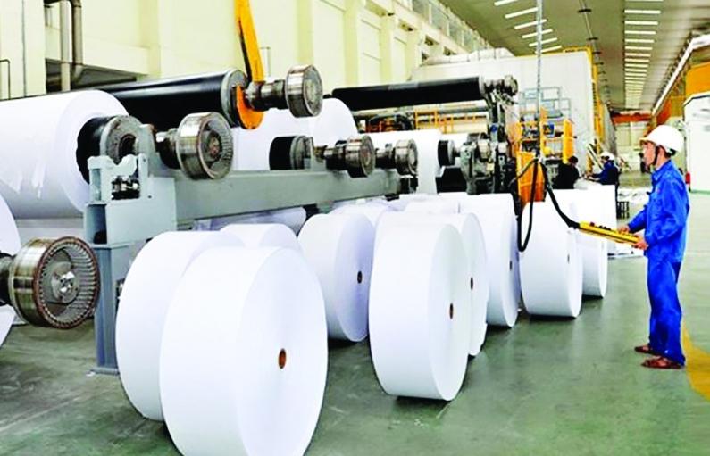 Doanh nghiệp giấy tăng đầu tư, kỳ vọng xuất khẩu từ FTA