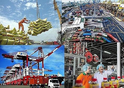 Sức sống của doanh nghiệp Việt