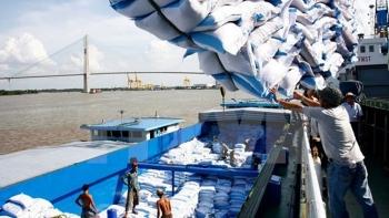 Xem xét kỹ cung-cầu lúa gạo để đảm bảo an ninh lương thực