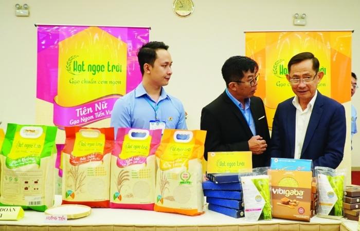 Được mùa, trúng giá, xuất khẩu gạo được đà tăng tốc