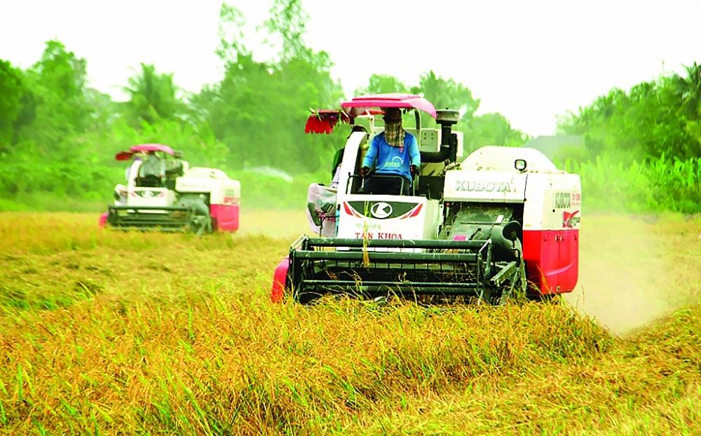 FTA thúc đẩy xuất khẩu tăng trưởng
