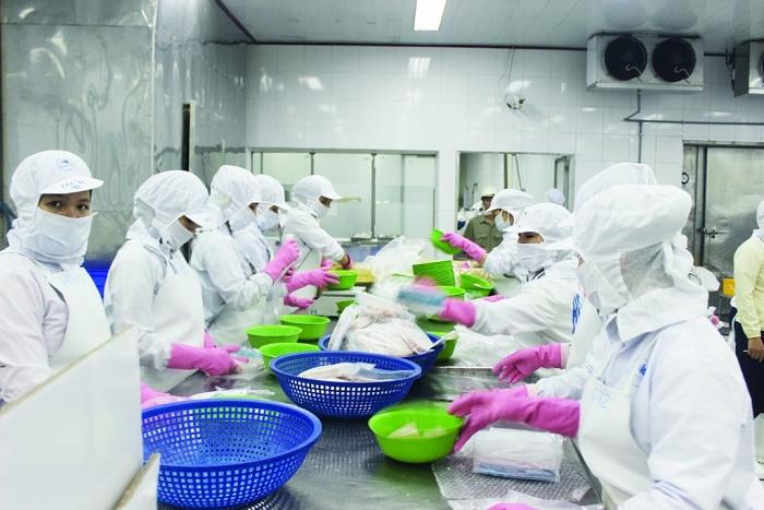 EVFTA: Lợi thế cạnh tranh cho doanh nghiệp thuỷ sản