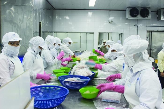 Thúc đẩy xuất khẩu nông, thủy sản hậu Covid-19: Tháo gỡ rào cản xuất khẩu thuỷ sản