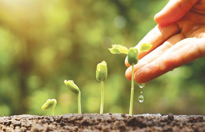 Cơ hội phục hồi từ tăng trưởng xanh