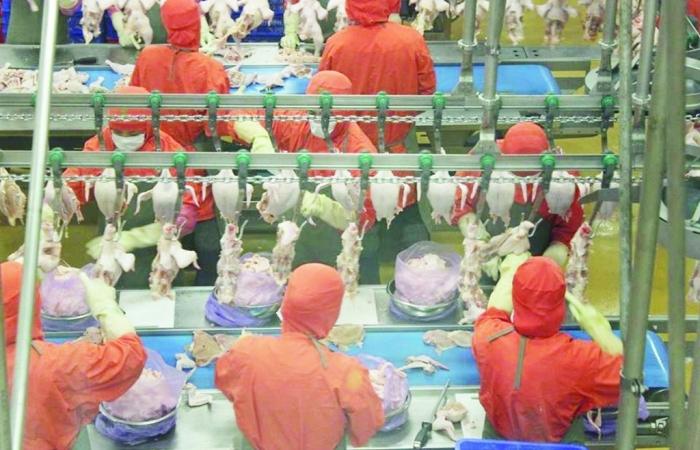 Doanh nghiệp chế biến thực phẩm phất lên giữa đại dịch