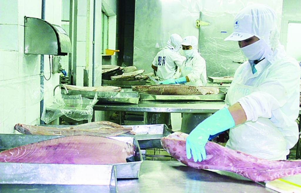 EVFTA đang được khai thác hiệu quả