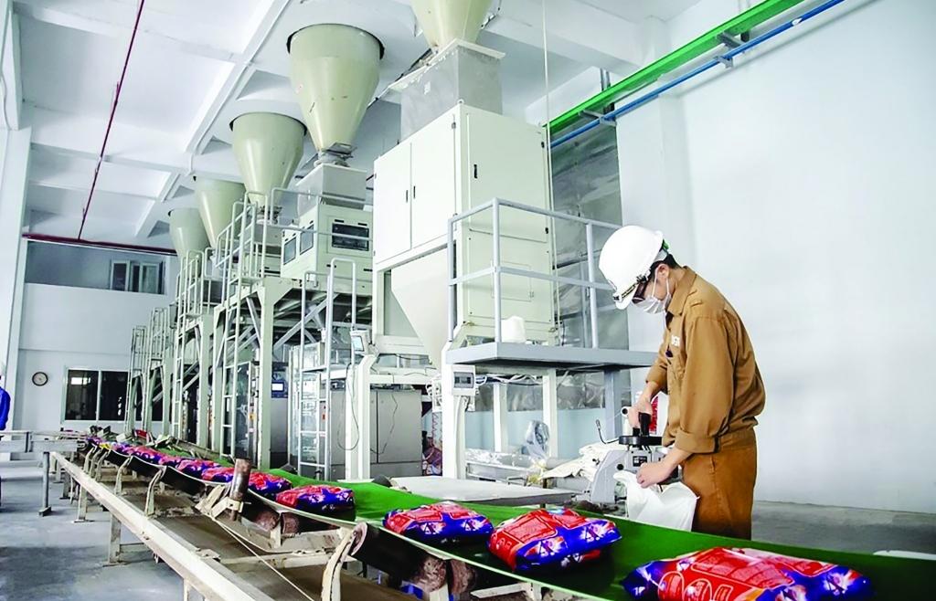 Tiềm năng xuất khẩu hóa chất, bột giặt vào EU