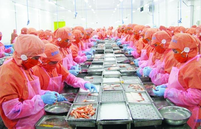 Trung Quốc siết kiểm tra hàng đông lạnh: Rau quả, thủy sản gặp khó