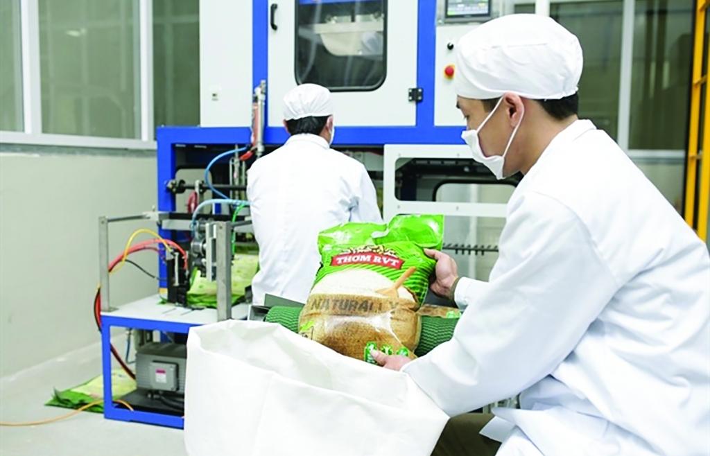 Tăng đầu tư R&D và lợi ích