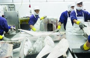 Xuất khẩu khó khăn, doanh nghiệp thủy sản đề xuất hỗ trợ