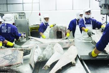 Kỳ vọng xuất khẩu cá ngừ sang 3 thị trường chính