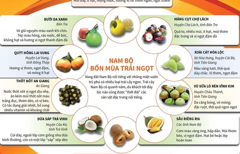 [Infographics] Những loại trái cây đặc sản của Nam Bộ