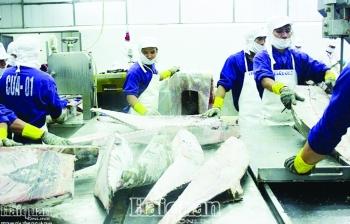 Nhờ xuất khẩu, doanh nghiệp thủy sản lãi lớn