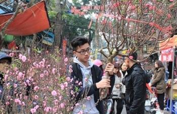 Hà Nội cấm đường phục vụ chợ hoa Xuân khu phố cổ Hoàn Kiếm