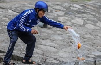 Cá chép vàng tiễn ông Táo vừa thả đã chết nổi ở hồ Hoàng Cầu
