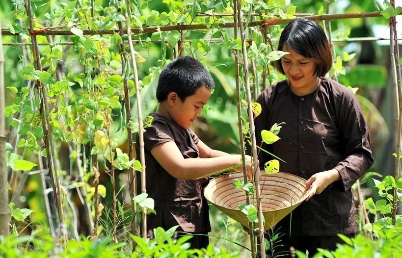 Về Thủy Thanh làm nông dân, thưởng thức sản vật đồng quê