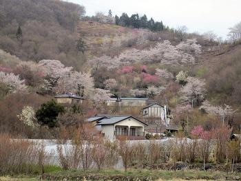 Du lịch Nhật Bản bằng chuyến bay thuê bao