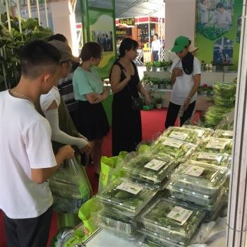 TPHCM: Gần 46% diện tích gieo trồng rau, quả đạt VietGAP