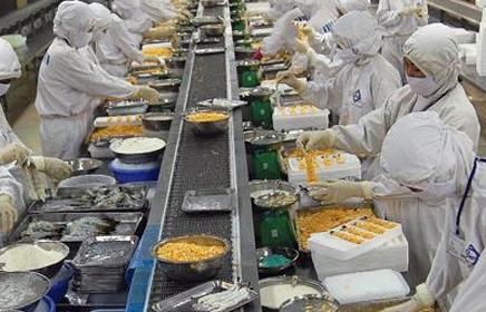 FMC đạt kỷ lục về doanh số từ mặt hàng tôm xuất khẩu