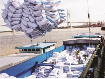 Xuất khẩu nông, thủy sản tự tin đạt mục tiêu 41 tỷ USD
