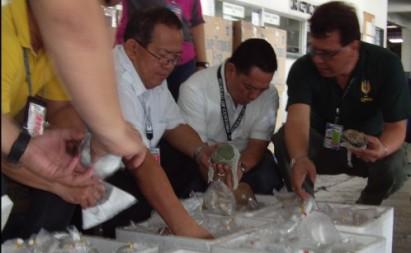 hai quan philippines thu giu 259 mon trang suc quy