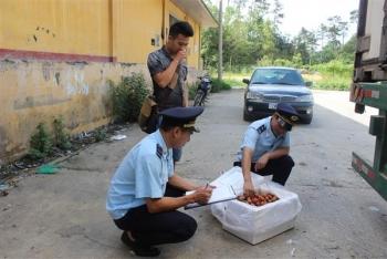 Tìm đường đi cho quả chanh leo của Việt Nam XK sang thị trường Trung Quốc