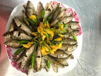 Lẩu cá linh bông điên điển - hương vị đặc trưng miền sông nước
