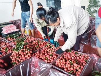 Xuất khẩu rau quả đạt 10 tỷ USD