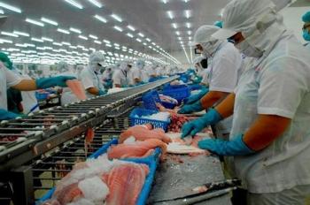 Vượt Trung Quốc, Mỹ trở thành thị trường nhập khẩu cá tra lớn nhất của Việt Nam
