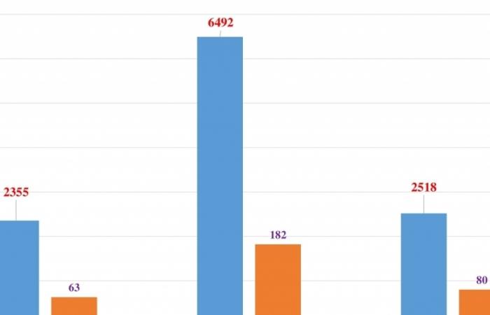 Chỉ hơn 2.500 ô tô ngoại lăn bánh về Việt Nam trong 15 ngày đầu năm
