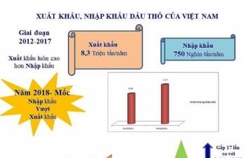 [Infographics] điểm nổi bật của hoạt động xuất nhập khẩu dầu thô