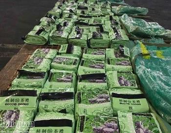 Tổng cục trưởng Tổng cục Hải quan nói về vụ phối hợp bắt 276 kg ma túy đá tại Philippines