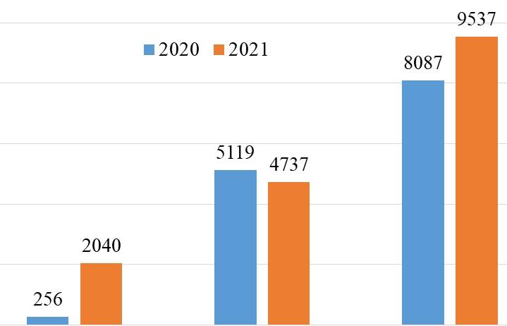 Ô tô nhập khẩu từ Trung Quốc tăng chóng mặt, gần 8 lần