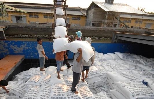 Gạo Việt tăng tốc vào EU