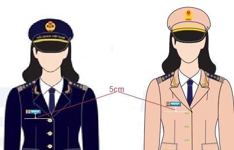 Sử dụng biển tên, phù hiệu, cấp hiệu của ngành Hải quan thế nào?