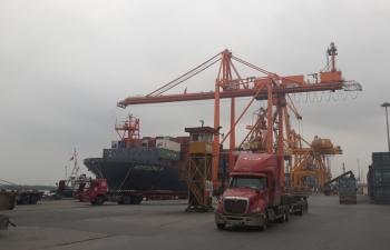 Hơn 260.000 container xuất nhập khẩu qua cảng Tân Vũ, Hải Phòng