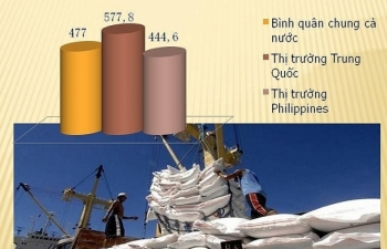 Giá gạo xuất khẩu sang Trung Quốc cao hơn bình quân chung 2,5 triệu đồng/tấn